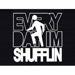 Everyday Im Shufflin T-shirt Adult Tee Lmafo Party Rock Song  CLICK ME!
